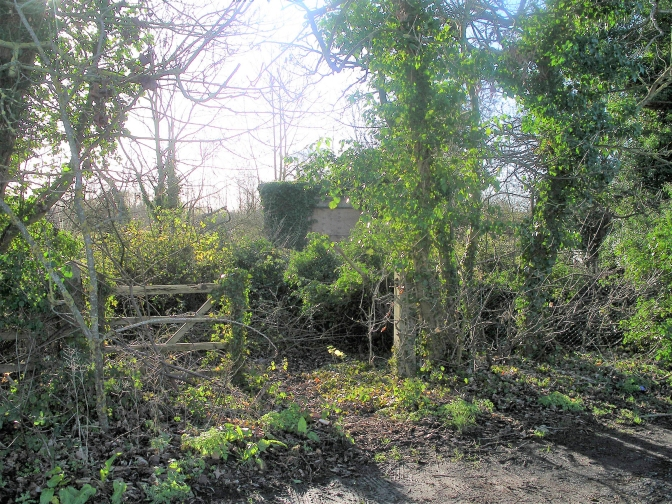 Five bedroom contemporary house proposed for site of former Biddenham sewage pumping station