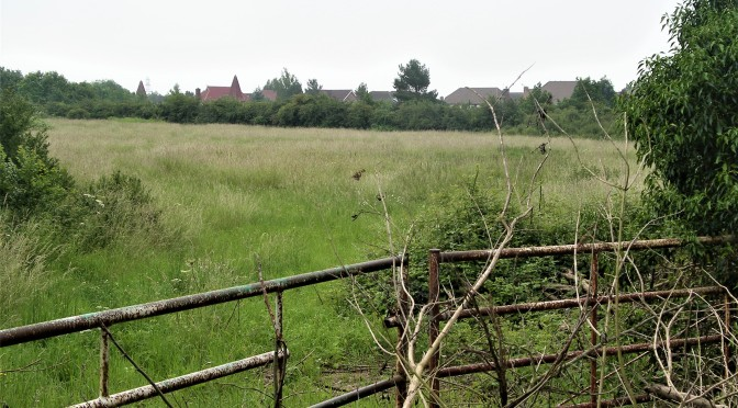 Church End paddock threatened again